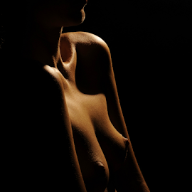 Golden body by Vineet Johri - Nudes & Boudoir Artistic Nude ( nude girl, art nude, art nude studio lighting workshop london, vkumar photography, madam bink, boobs )