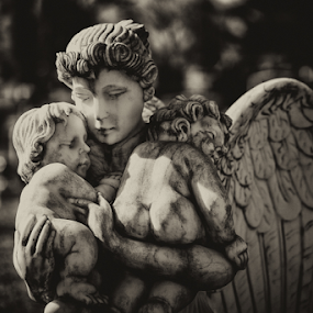 Don't Blink by Shane Moss - Buildings & Architecture Statues & Monuments ( angel, tombstone, statue, tomb, cherub, memorial, marker, cemetery, weeping angel, grave, gravestone, graveyard,  )