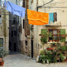 quite corner in Rovinj by Almas Bavcic - City,  Street & Park  Neighborhoods