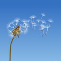 Dandelion icon