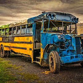 Old abandoned school bus by Izzy Kapetanovic - Transportation Other ( grunge, old, sky, bus, decay, abandoned )