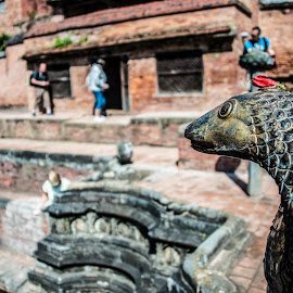 Fountain detail. Historic Bhaktipur, Nepal. by Eva Kamienska-Carter - Buildings & Architecture Architectural Detail ( bhaktipur, detail, fountain, architecture, nepal )