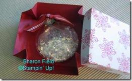Ornament-and-explodingbox_o