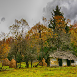 Autumn by Macinca Adrian - Landscapes Travel