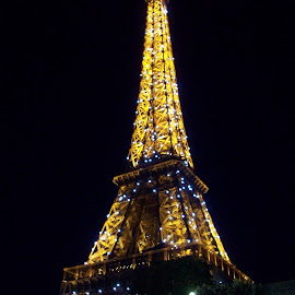 Eiffel Tower  by Tammy Jones Perdue - Buildings & Architecture Statues & Monuments ( paris, eiffel tower, france,  )