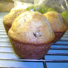 A Pail in the Fridge 6 Week Bran Muffins