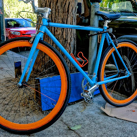 Bright Beauty by Barbara Brock - Transportation Bicycles ( orange bike tires, colorful bike, blue bicycle )