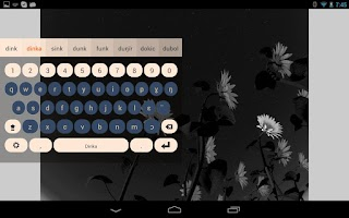Screenshot of Dinka Keyboard Plugin