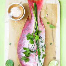 Red snapper with fennel