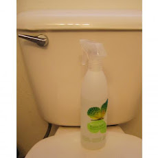 Environmentally Friendly Toilet Disinfectant