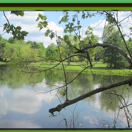 Beauty in Missouri by Mary Voss - Digital Art Places ( canon, walking with grandson, trees, fishing, manmade lake )