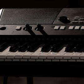 keyboards by Ariel Crisme - Artistic Objects Musical Instruments
