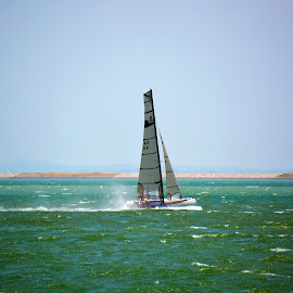 Speed Sailing by Alan Chew - Sports & Fitness Watersports (  )