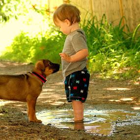 boy sammy puppy.jpg