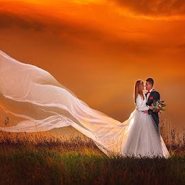 wedding by Dejan Nikolic Fotograf Krusevac - Wedding Bride & Groom ( aleksandrovac, kraljevo, vencanje, fotografia, pozarevac, svilajnac, subotica, snasa, krusevac, svadba, kragujevac, vrnjacka banja, fotograf )