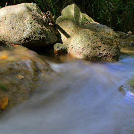 Rocks and water by Gil Reis - Nature Up Close Rock & Stone ( water, life, nature, portugal, rivers, stones, rocks )