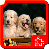 Dogs Puzzles APK for Nokia