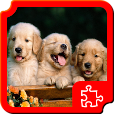 Dogs Puzzles