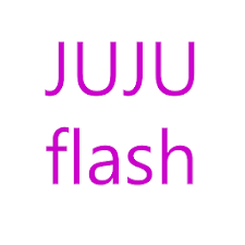 JuJu Flashlight