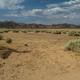 by Bud Walley - Landscapes Deserts