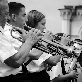 Brass band by Cassandra G - People Musicians & Entertainers ( music, black and white, trumpet, bras band, orchestra, musician, brass, entertainment )