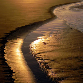 Love the golden sandy beaches by Liz Hahn - Nature Up Close Sand
