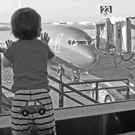 Gate 23 by Robbie Green - Babies & Children Toddlers ( airport, plane, cockpit, jetway, airplane, baby, toddler, boy, gate )