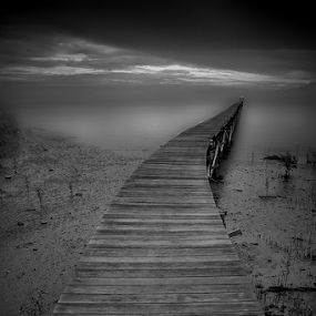 by Dadi Cai - Black & White Landscapes