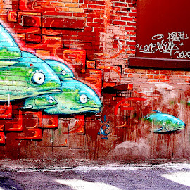 Swimming Through the Wall by Ronnie Caplan - City,  Street & Park  Street Scenes ( orange, painted, wood, green, fish, brick, graffiti, door, shadows, wall )