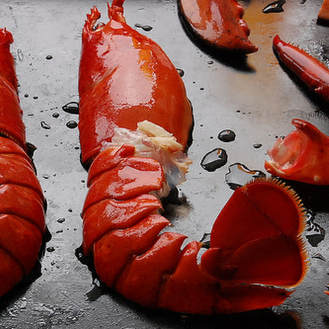 Steamed Lobster with Roasted Lobster Mayo