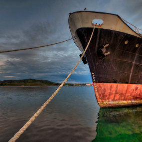 Dino by Miro Cindrić - Transportation Boats