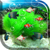 Aquarium Live Wallpaper APK for Bluestacks