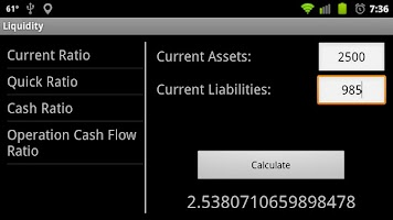 Screenshot of Financial Ratio Calculator