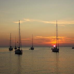 by Nevenka Zajc Medica - Landscapes Sunsets & Sunrises (  )