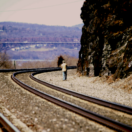 walking the tracks by Alec Halstead - Landscapes Travel