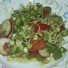 Sprouted Lentil Salad