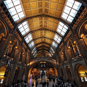 Grand Hall at NHM by Almas Bavcic - Buildings & Architecture Public & Historical