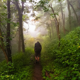 On the Trail by Carol Plummer - Instagram & Mobile iPhone ( backpacking, appalachian trail, mountain, fog, landscape, hiking,  )