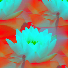 Inverted Art - Seamless Waterlilies by Tina Dare - Digital Art Abstract ( abstract, seamless, waterlily, inverted art, red, patterns, designs, distorted, water lilies, shapes )