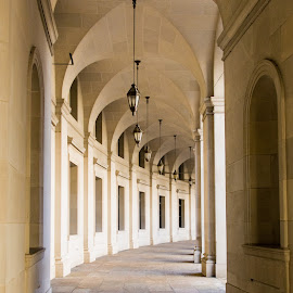 Curved Corridor by Terry Thomas - Buildings & Architecture Other Exteriors ( curve, building, arches, walkway, washington dc, curved, concrete, sidewalk )