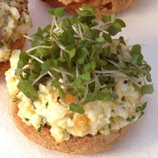 Open-faced Egg, Chive and Spring Onion Sandwiches