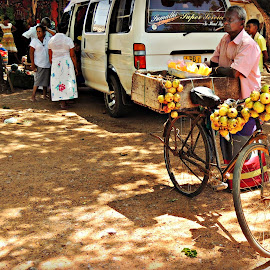 Sri Lankan Fruit Seller by Tamsin Carlisle - City,  Street & Park  Markets & Shops ( van, fruit, market, vendor, trees, sri lanka, shadows, bicycle )