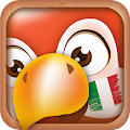 Download Learn Italian Phrases | Italian Translator APK for Android Kitkat