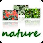 wallpapers-nature-640x480-ZERO icon