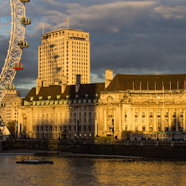 London Eye and County  Hall by Tracey Dolan - City,  Street & Park  Historic Districts