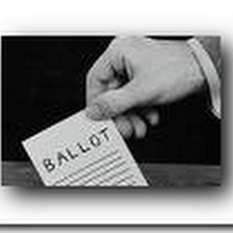 Political Genes - Personalized voting?