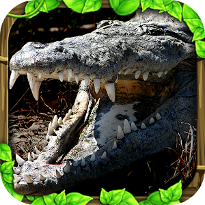 Cover art Wildlife Simulator: Crocodile