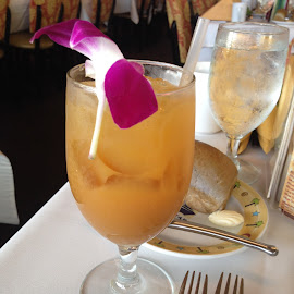Mai Tai for One! by Dawn Simpson - Food & Drink Alcohol & Drinks ( refreshing, mai tai, alcoholic, cocktails, hawaii )