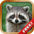 Game Animals for Kids, Planet Earth Animal Sounds Photo APK for Kindle
