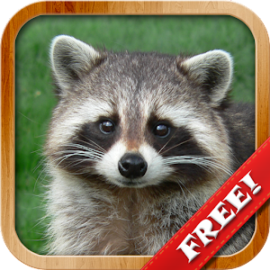 """Kids learn about Animals"" application - teach children through play! APK Icon"